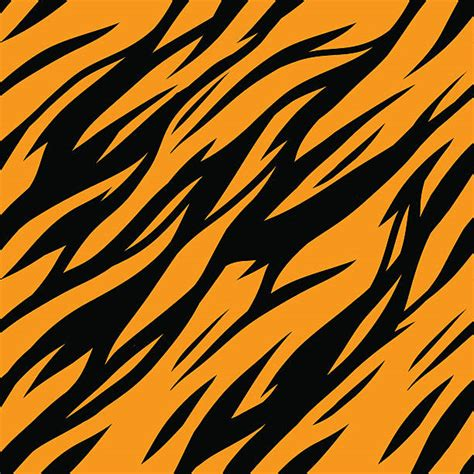 tiger pattern seamless vector tiger clip art vector images illustrations istock