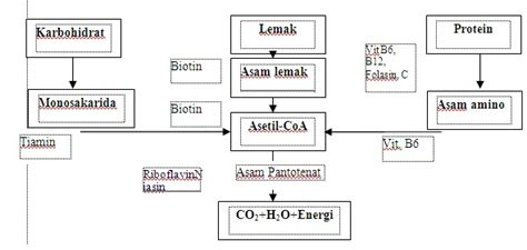 Biokimia Pangan Dasar mikrobiologi 2 kita cari sama sama karena bersama lebih