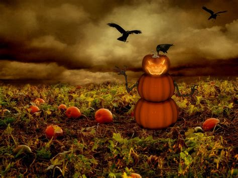 pumpkins wallpaper wallpapers free wallpapers angry