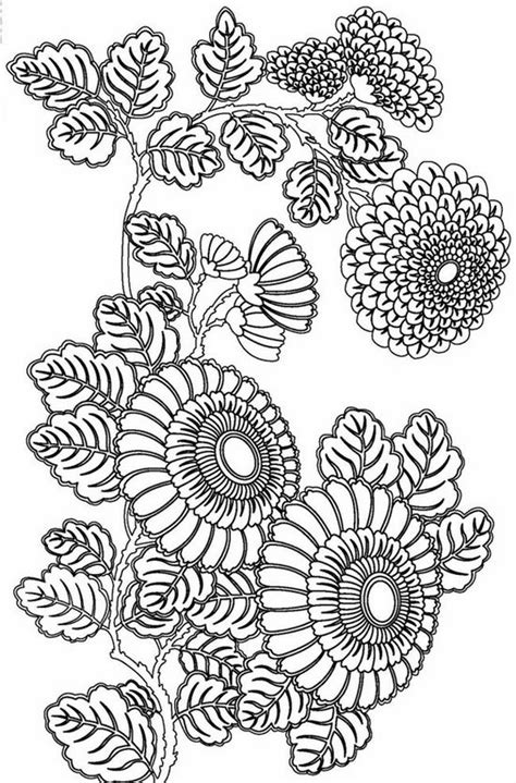 coloring pages for adults advanced free printable coloring pages for adults advanced google
