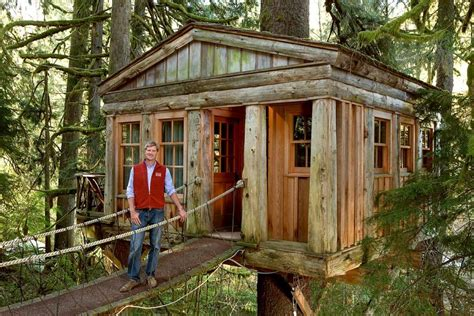 livable tree house designs photos of livable tree houses
