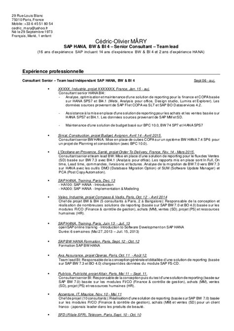 Sle Resume Senior Consultant 100 Senior It Consultant Resume Consultant Resume Exle For A Senior Manager Marketing