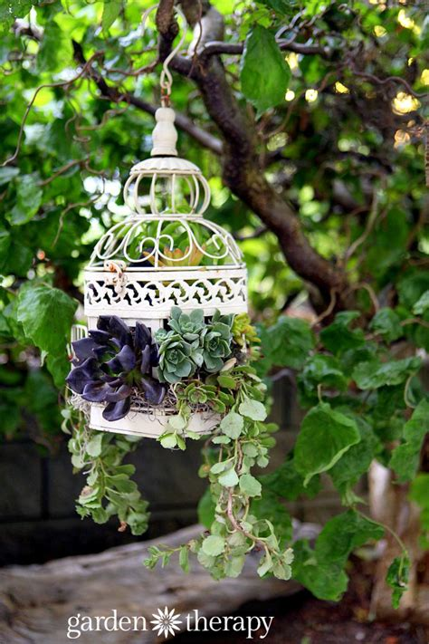 how to make planters how to make a birdcage succulent planter garden therapy