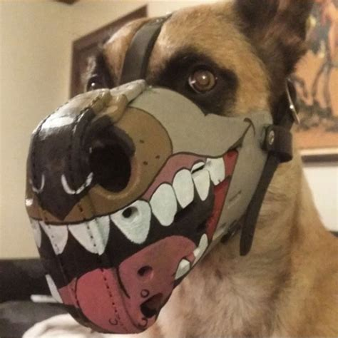 where can i buy for my puppy the most intimidating muzzles you can buy for your animals