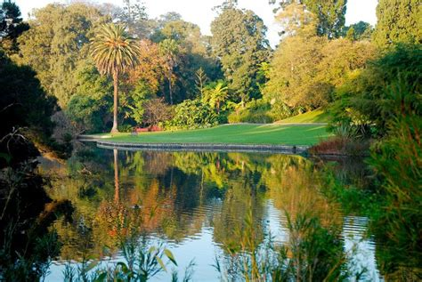 Botanical Gardens Melbourne 10 Top Gardens In Greater Melbourne Melbourne