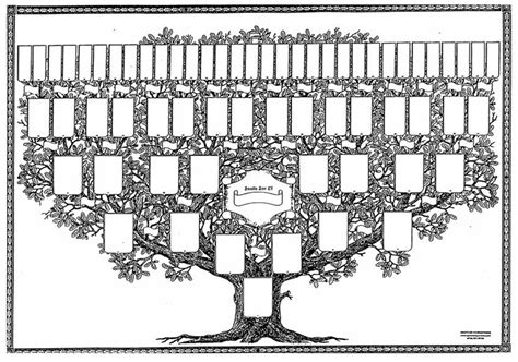 printable decorative family tree the gleason gleeson dna project post your pedigree