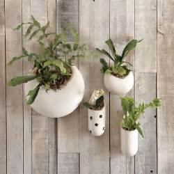 Indoor Wall Planter by 10 Modern Wall Planters