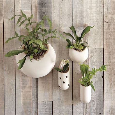 wall mounted planter 10 modern wall planters