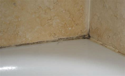 mold around bathtub mold around tub picture of doubletree by hilton hotel st