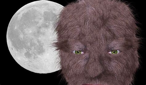 werewolf tutorial photoshop 187 turning yourself into a werewolf with photoshop