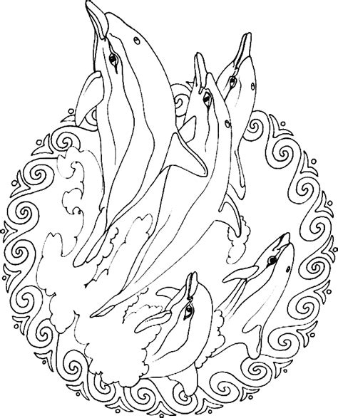 dolphin mandala coloring pages dolphin color pages az coloring pages