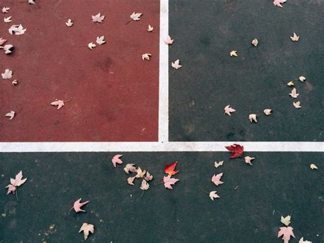 vsco grid tutorial 1887 best repins images on pinterest photography