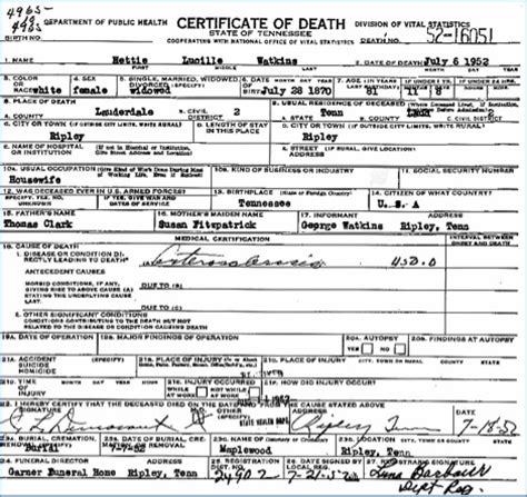 Divorce Records Shelby County Tn Beginning To Research Your Ancestors In Tennessee