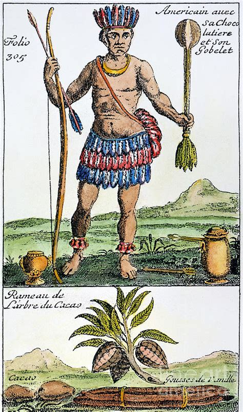 aztec chocolate 1685 by granger