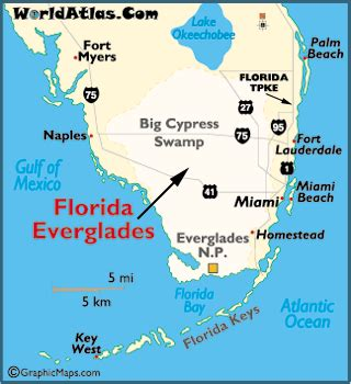 everglade city florida map dan and seek alligators at florida s everglades