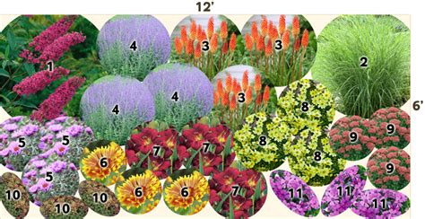 perennial garden plans zone 3 shade plants perennials for zone 5 garden plans
