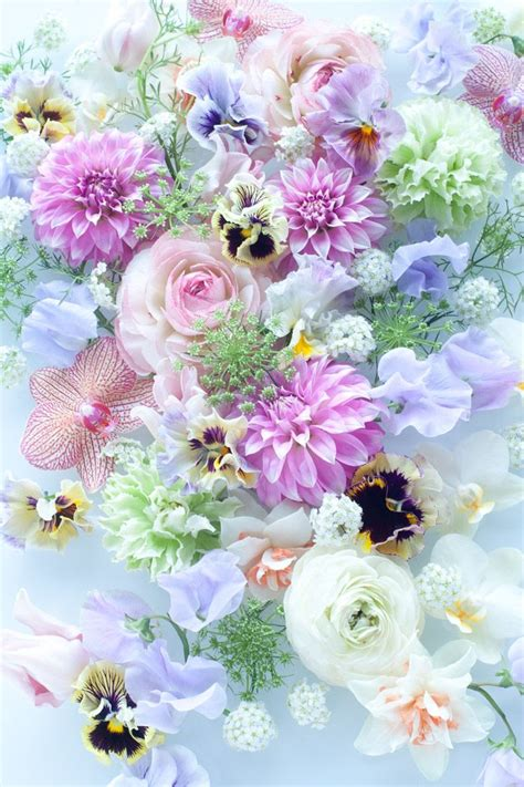 wallpaper flower pastel 205 best android wallpapers images on pinterest android
