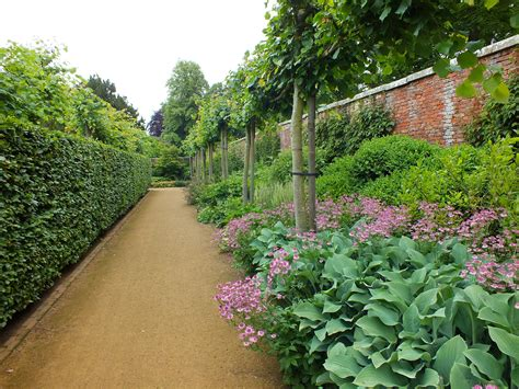 the backyard gardener scston walled garden the teddington gardener