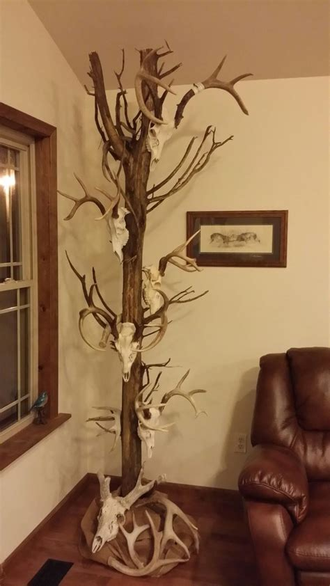 home interior deer picture 100 home interior deer pictures excellent deer horn decorations 45 about remodel home