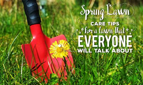 spring landscaping tips spring lawn care tips for a lawn that everyone will talk