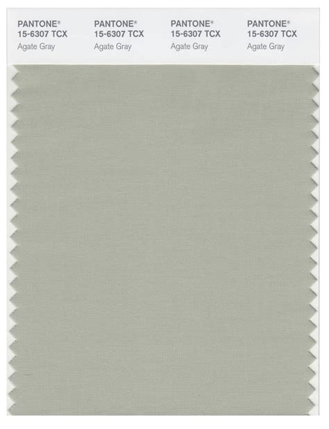 pantone smart   tcx color swatch card agate gray