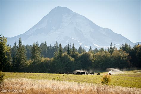 mt hood bed and breakfast blaine and bethany photography blog 187 new photos and