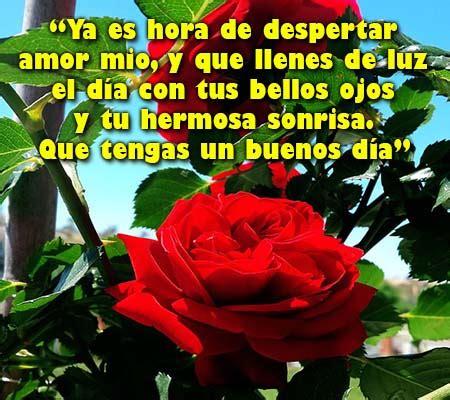 imágenes de buenos dias mi amor con rosas imagenes de rosas con frases de buenos dias rosas de amor
