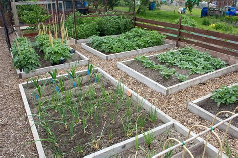 Garden Allotment Ideas with Britains Best Allotment Competition Allotment Garden Diary