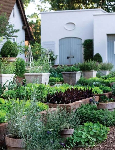shallow rooted vegetables herbs and other shallow rooted vegetables can be grown in