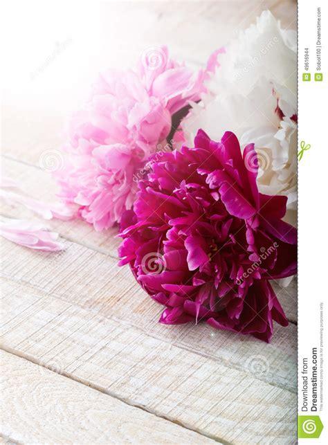 cartoline fiori cartoline con fiori auguri buon compleanno cartolina