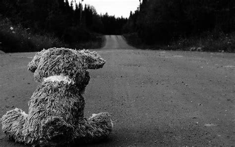 imagenes de fondo tristes caminos tristes animales de peluche monocrom 225 tico osos de