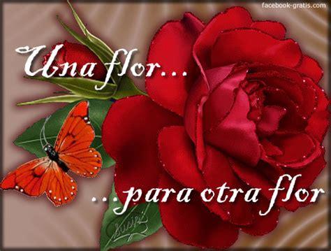imagenes de flores con frases lindas flores animadas con frases imagui