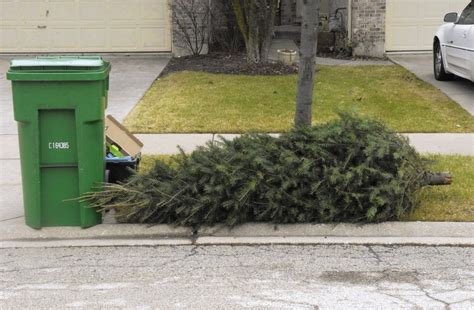 waste management christmas trees trash and tree disposal city of huntsville