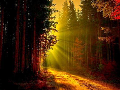 pathways of light god s faithfulness isaiah ministries