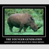 Ace Ventura Rhino Scene Gif