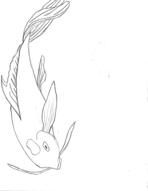 Drawing Koi Fish by How To Draw Easy Koi Fish