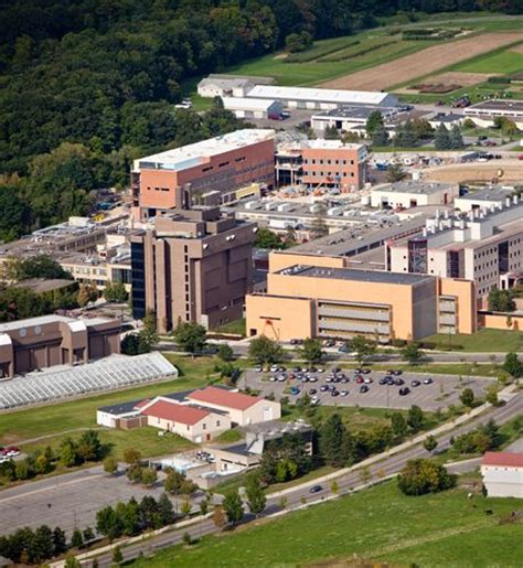 top veterinary colleges in the us the top 10 veterinary schools in the united states