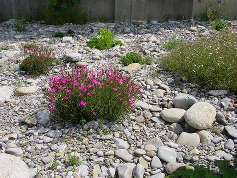 japanische gärten bildergalerie pin steing 228 rten on
