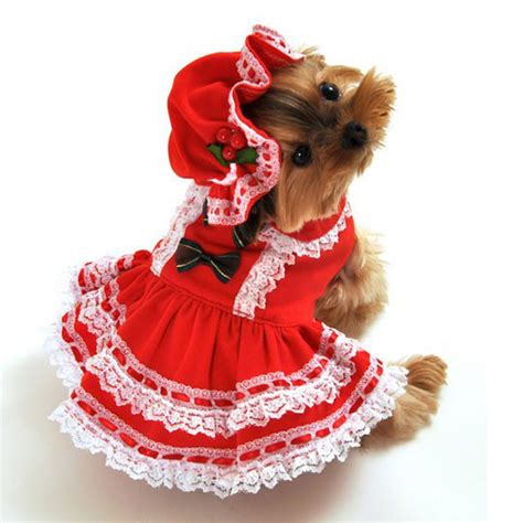 infant puppy costume miss santa baby costume baxterboo