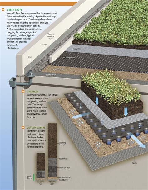 green roof green rooftop on pinterest green roofs roof gardens and