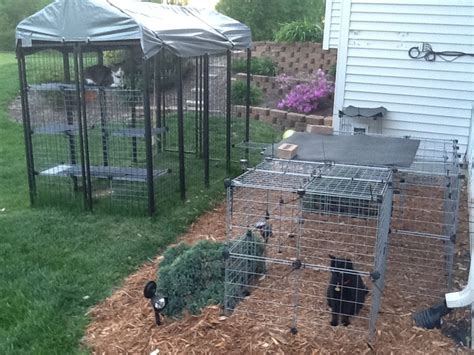 menards dog houses 1000 images about dog kennels on pinterest for dogs play pen and dog pen