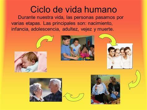 imagenes ciclo de vida de una persona para imprimir ciclo vital humano timeline timetoast timelines
