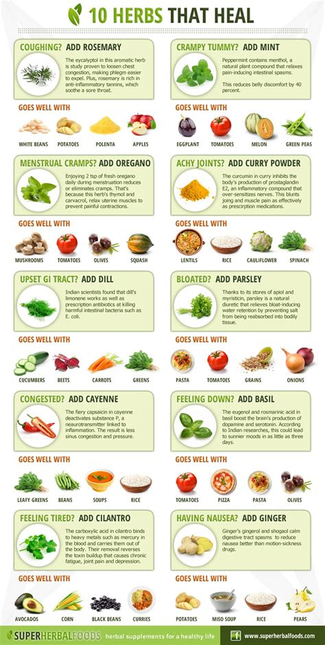 herbs chart 10 herbs that heal share knowledge pinterest