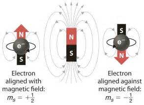 Magnetic Moment Of Proton Building Up The Periodic Table