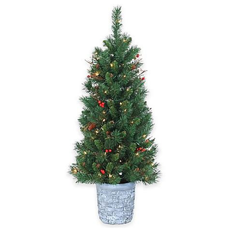 buy 4 foot pre lit potted hazelwood pine christmas tree