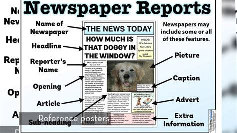 features of a newspaper by sherish teaching resources tes the newspaper reports pack teaching resources youtube