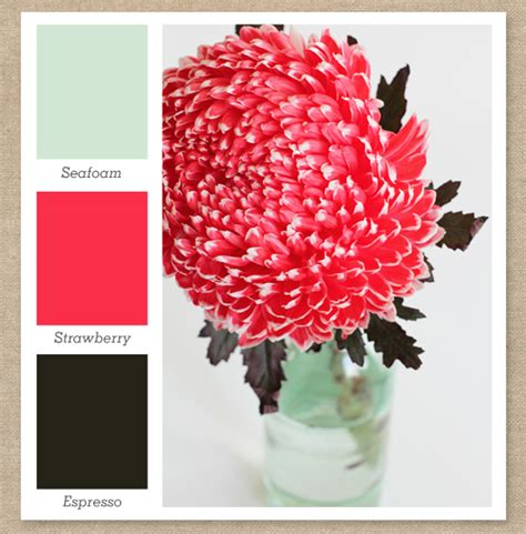 pink and brown color scheme sarah hearts mint green pink and dark brown color palette