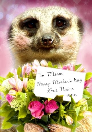 WWW.FUNKYPIGEON.COM   PERSONALISED Card   Meerkat   Mother