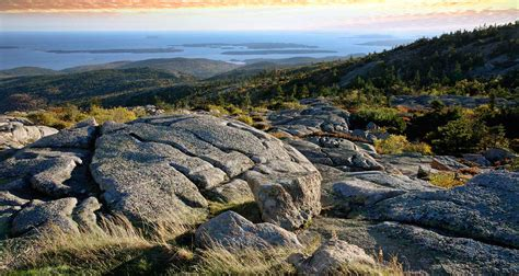friendly hotels maine bar harbor maine pet friendly lodging hotels dogs allowed alltrips