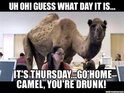 Thursday Funny Memes - guess what day it is funny stuff pinterest